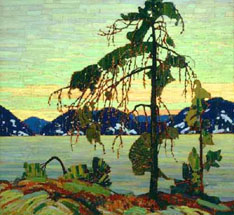 Tom Thomsons Jack Pine, 19161917: paving the way for the Group of Seven.