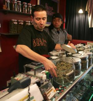 Sativa Steve's apparently quite legal medical marijuana store in San Francisco : what is it Marc Emery's going to jail for again?
